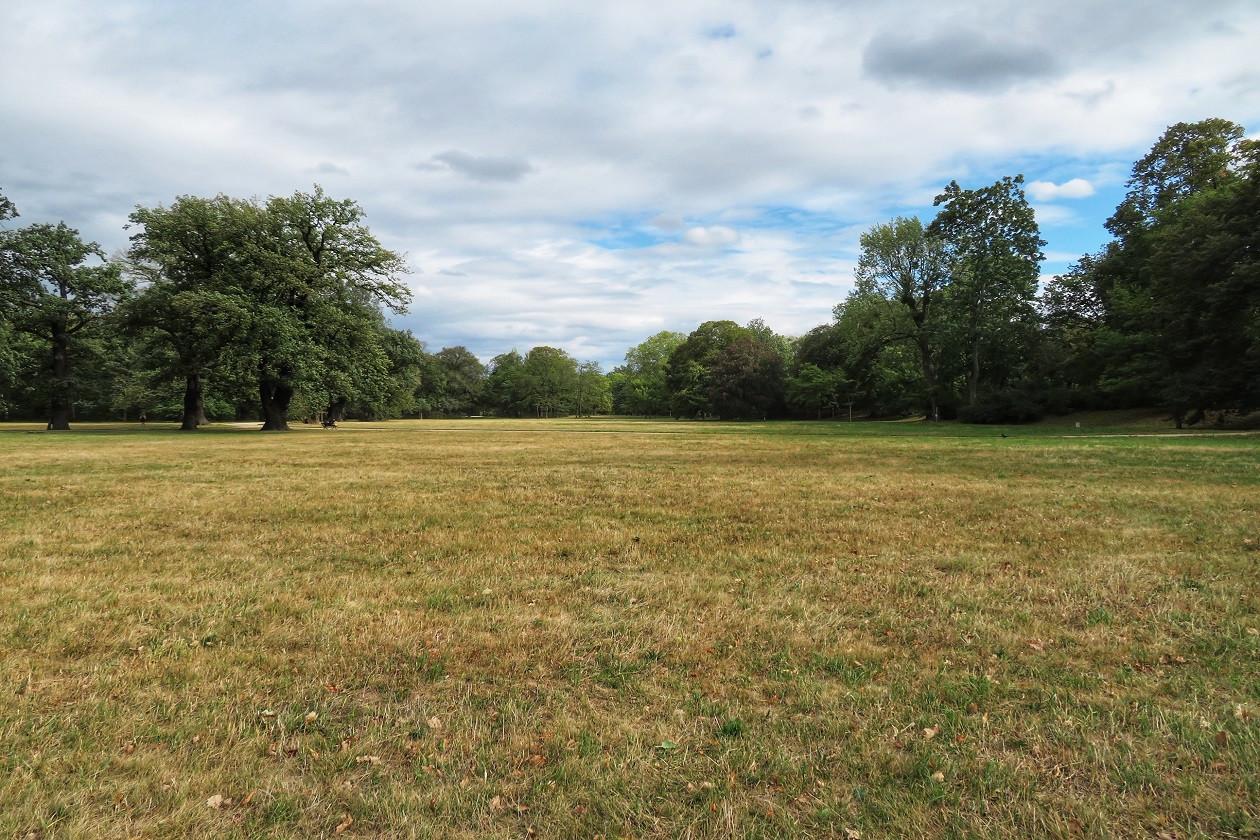 Die perfekte Wiese zum Picknicken? Große, flache Grünflächen können Sie mit meinGrün finden.