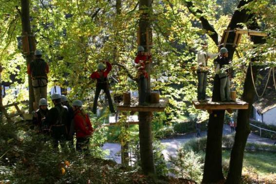 Hoch hinaus geht es bei den unterschiedlichen Parcours im Waldseilpark