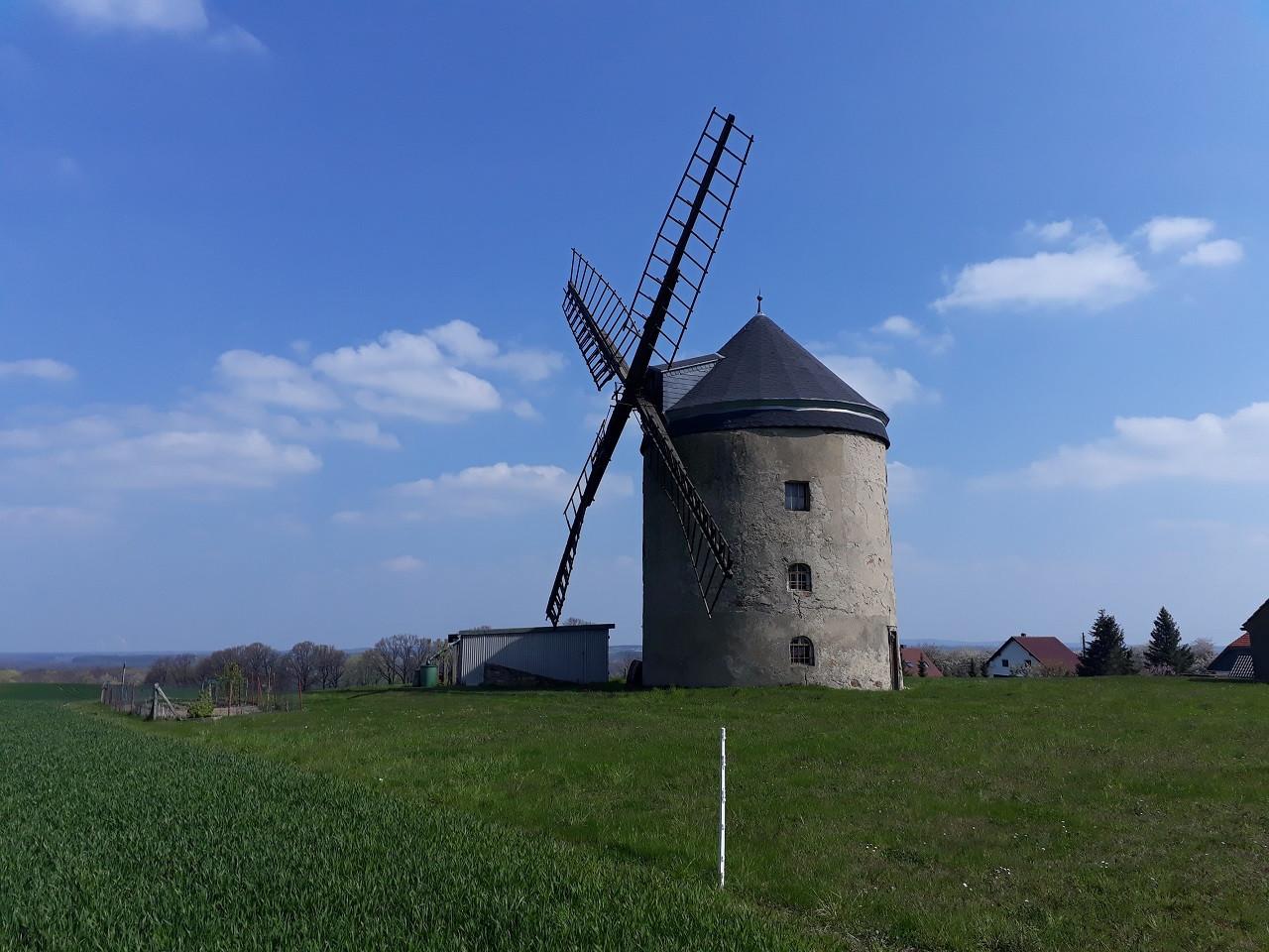 Der Turmholländer in Rodewitz ist im Familienbesitz. Ein Flügel hatte kürzlich Sturmschaden genommen.