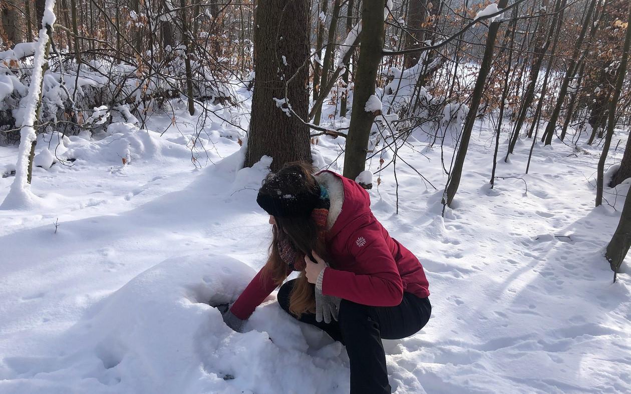 """Winter: Geocaching <a href=""""https://augusto-sachsen.de/articles/veranstaltungen/geocaching-in-der-dresdner-heide-901"""">in der Dresdner Heide</a>"""