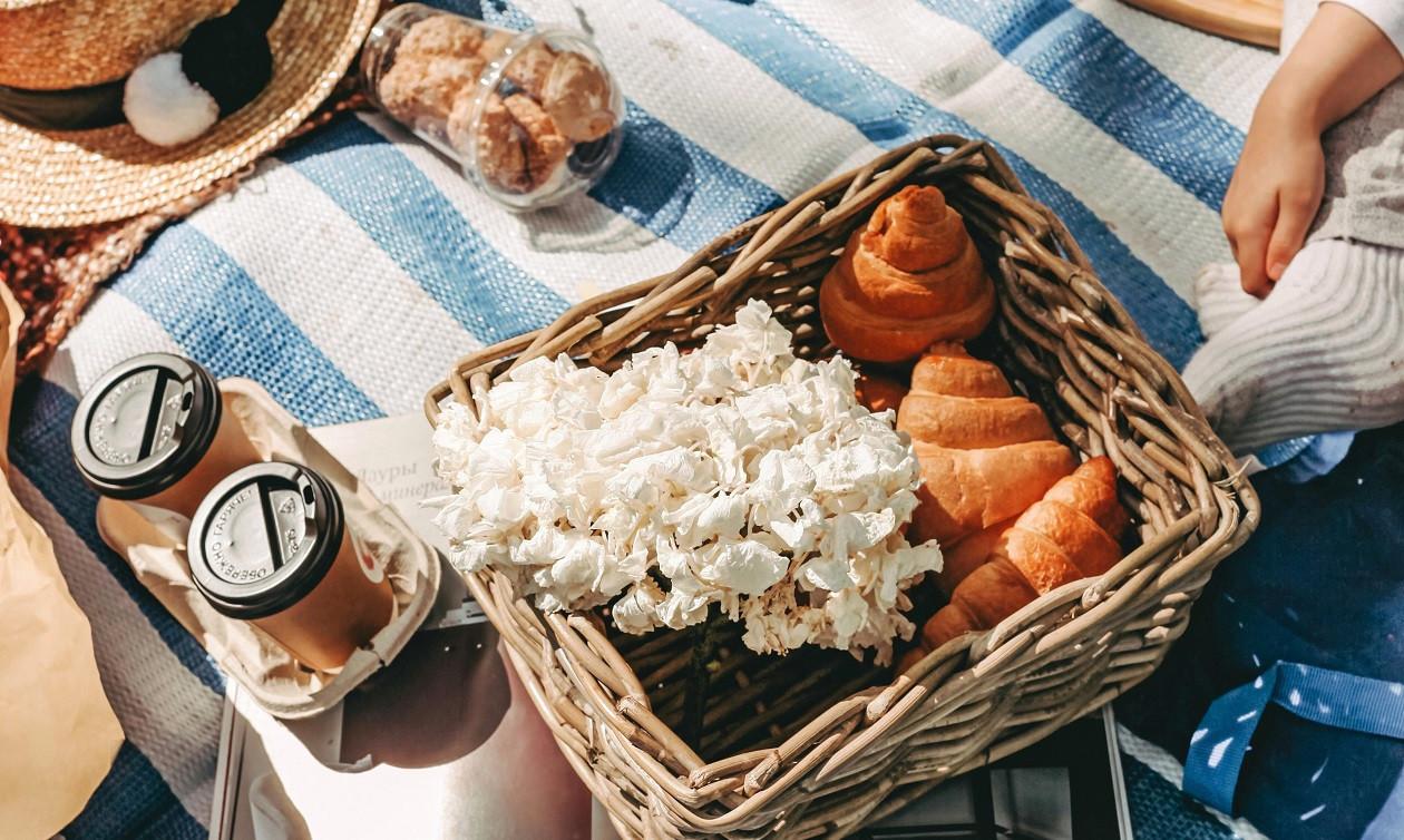 """Rezepte zum Elften: <a href=""""https://augusto-sachsen.de/articles/3-picknick-rezepte-130024"""">3 Picknick-Rezepte</a>"""