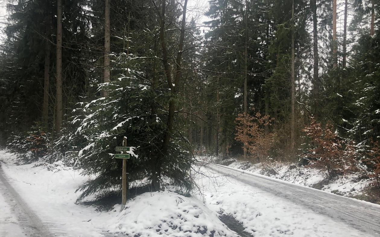 """Winter: Geocaching <a href=""""https://augusto-sachsen.de/articles/veranstaltungen/geocaching-im-tharandter-wald-800"""">im Tharandter Wald</a>"""
