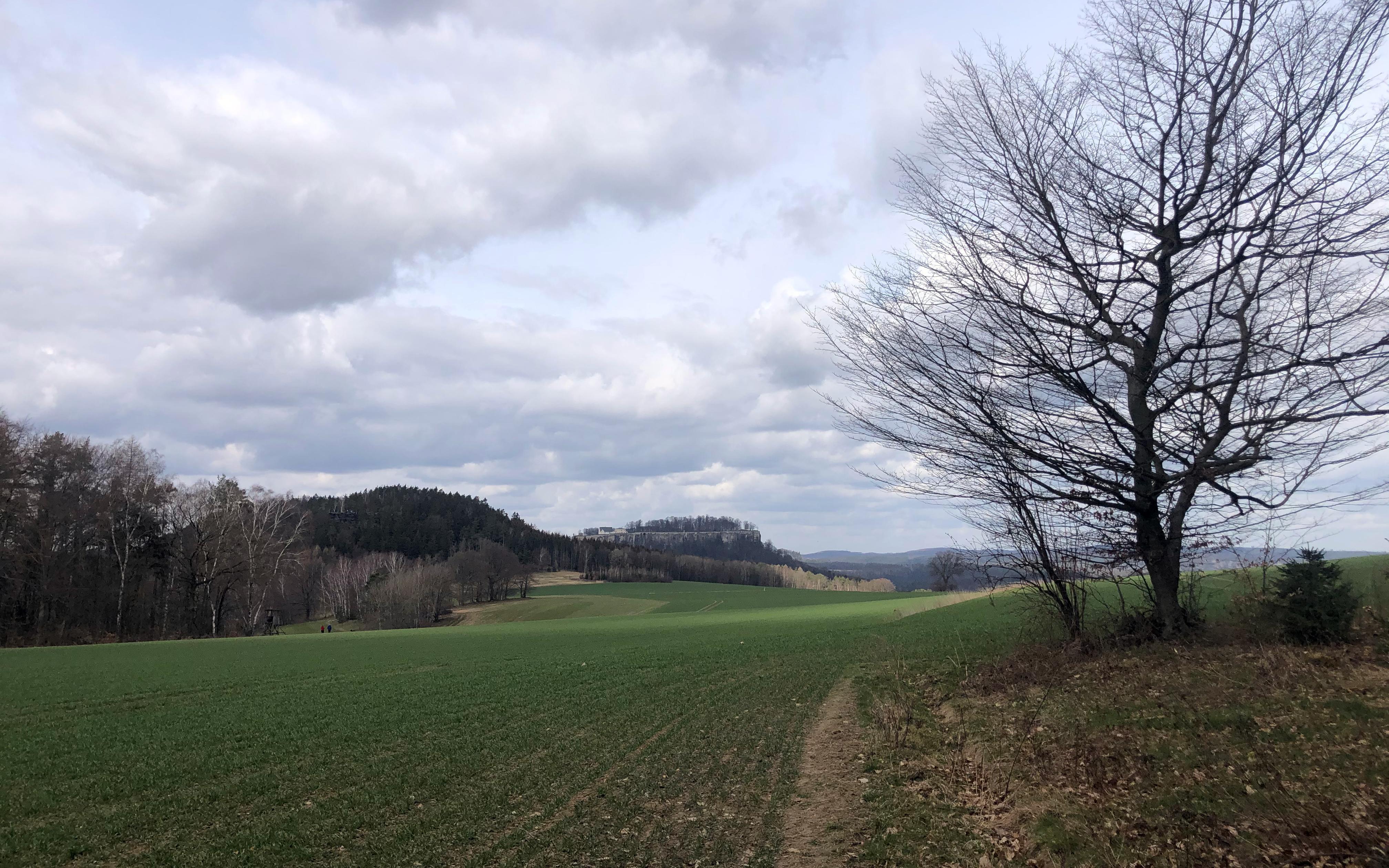 Am zweiten Cache kann man die Aussicht mit der Festung Königstein in der Ferne genießen.