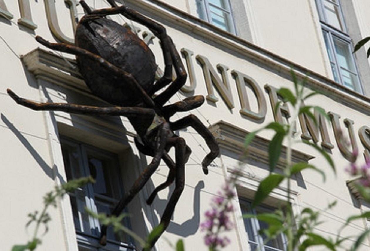 Die erste Spinne begegnet dem Besucher schon vor dem Eingang zum Naturkundemuseum.