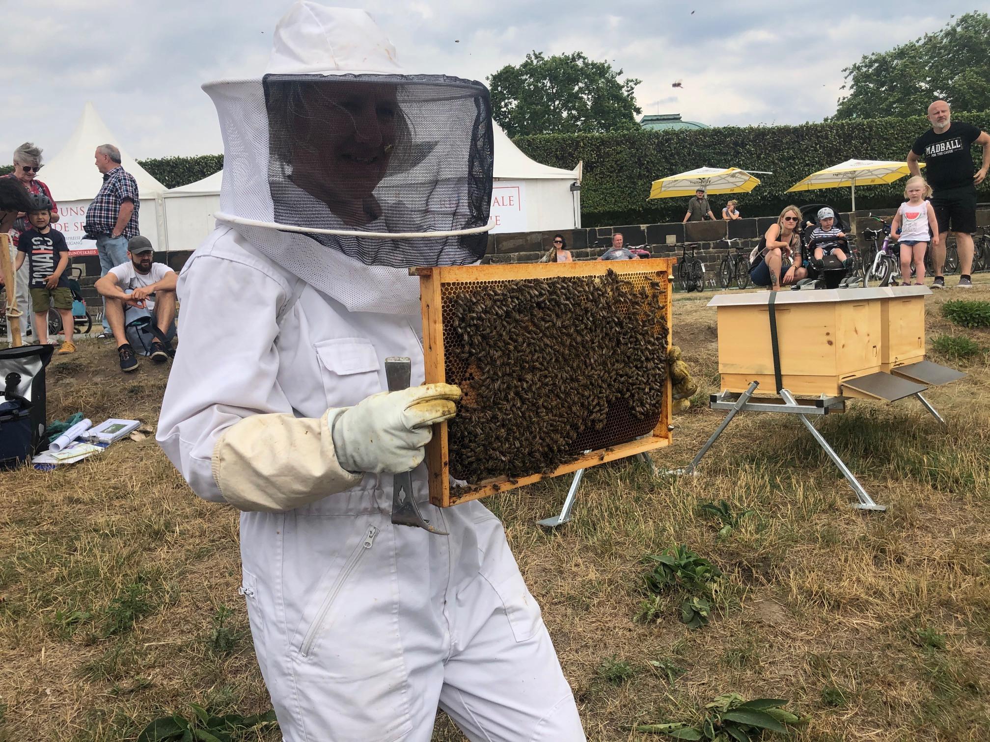 Imkerin Uta Tomczak beantwortet den Gästen sämtliche Fragen rund um Bienen.